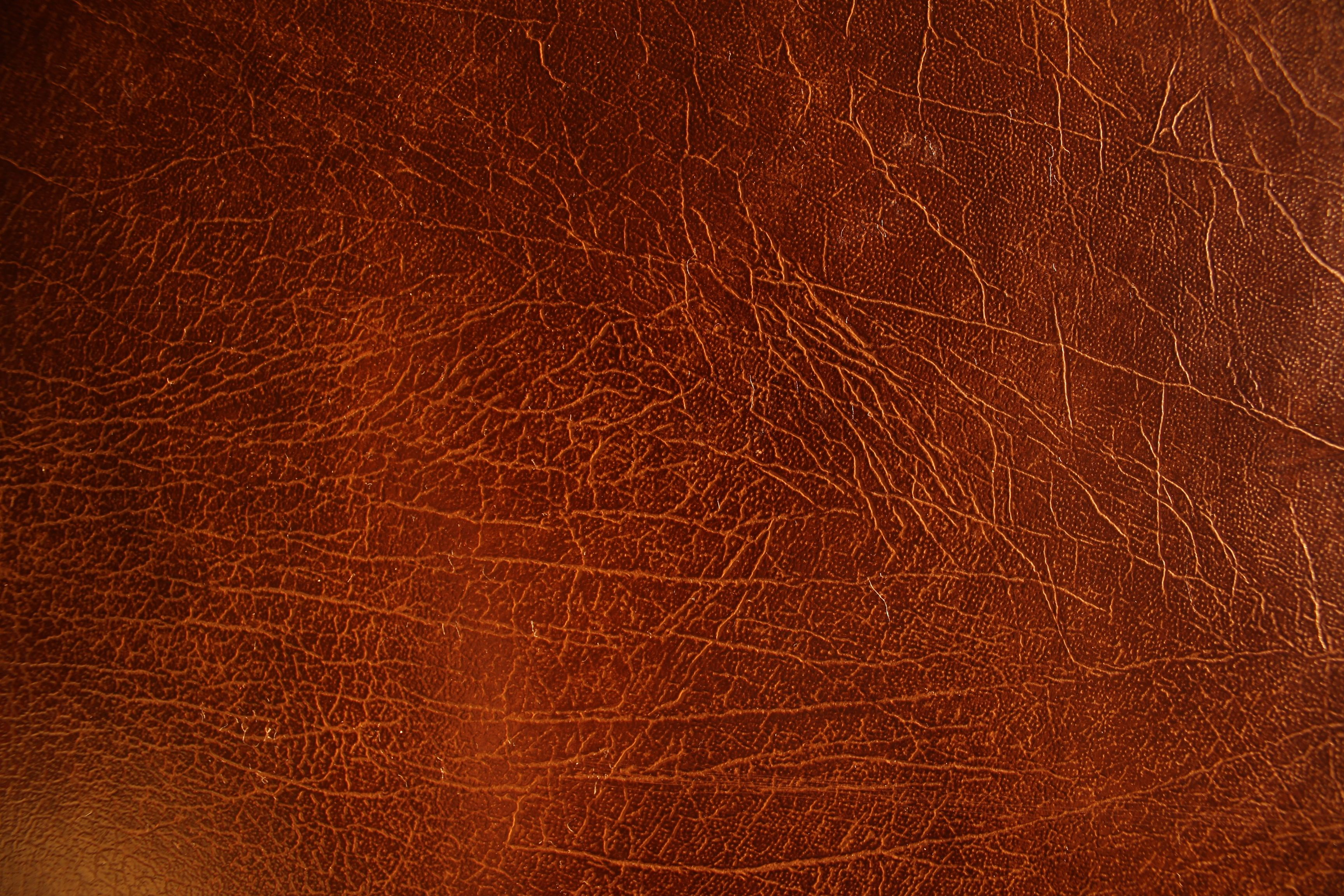 Set Of Dark Red Crumpled Leather Textures Stock Photo