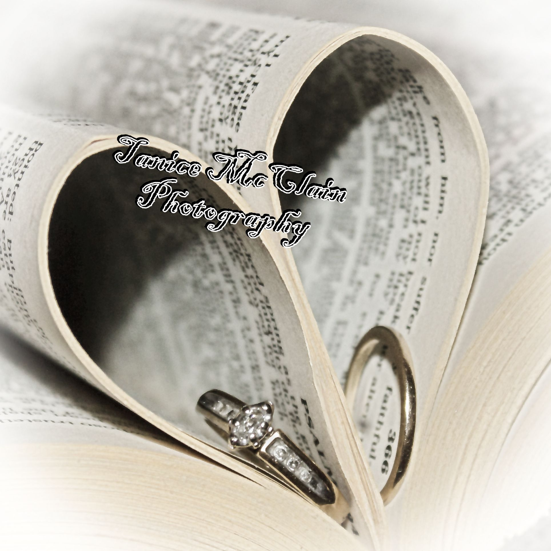 wedding rings in a bible photography photography