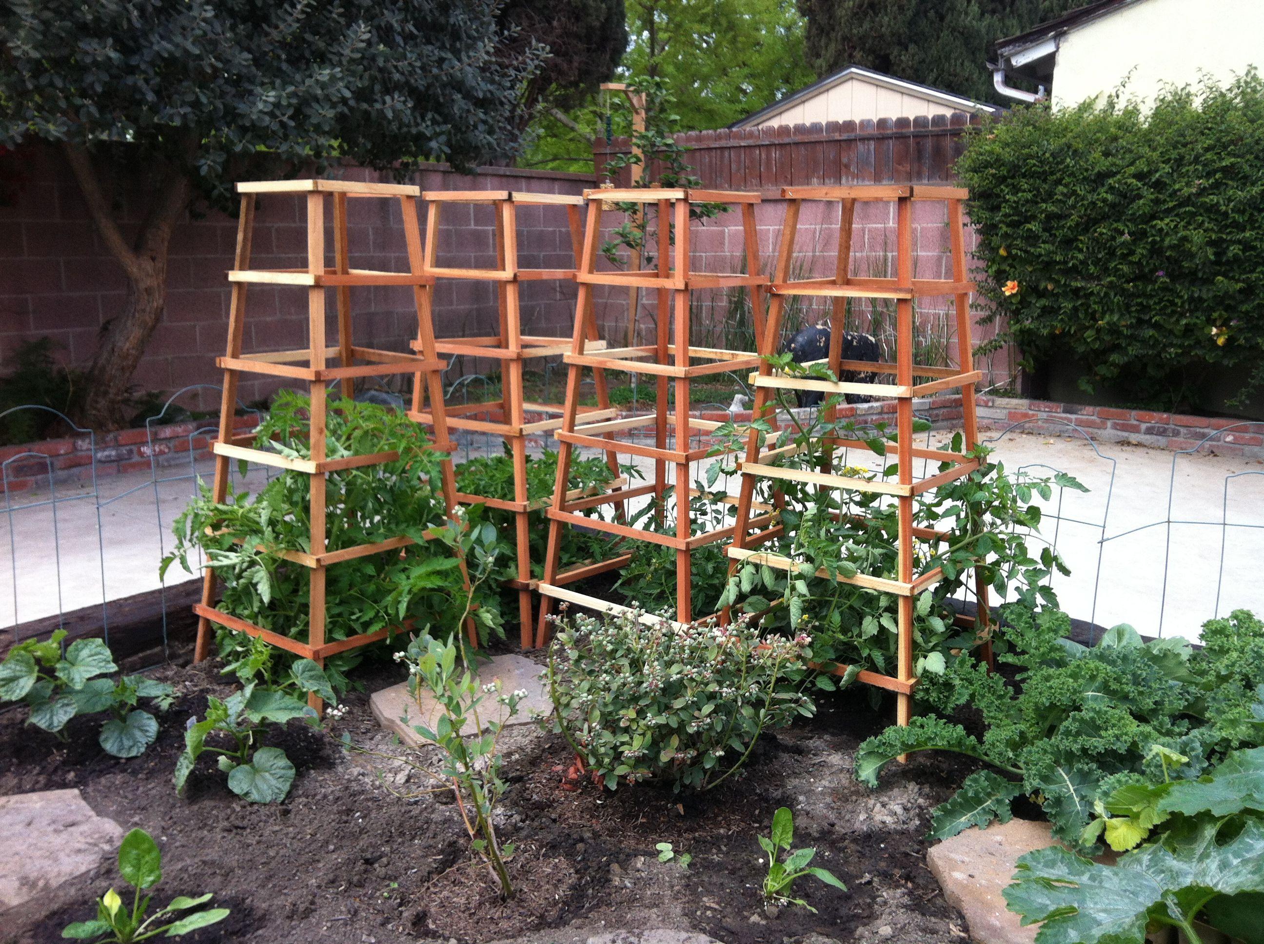 Vegetable garden trellis for Vegetable garden trellis