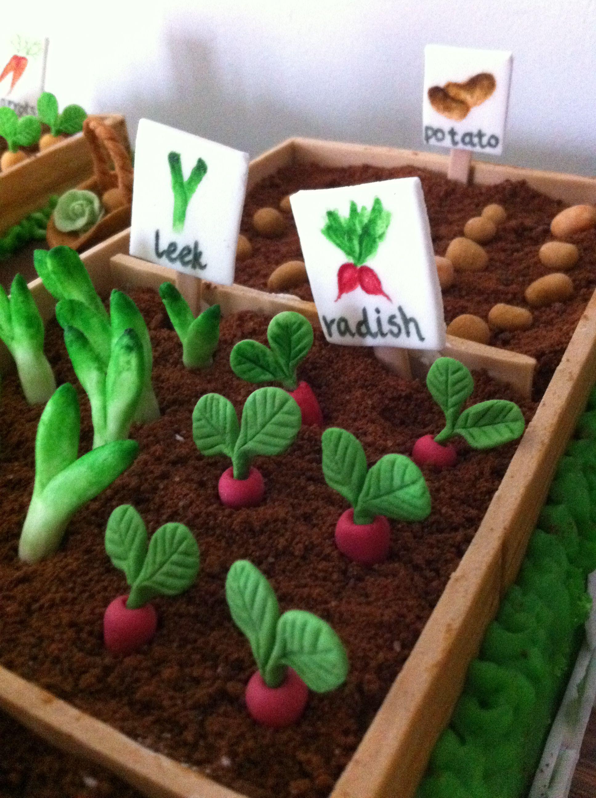 Vegetable Garden Cake Ideas 67359 | Vegetable Garden Cake Ga