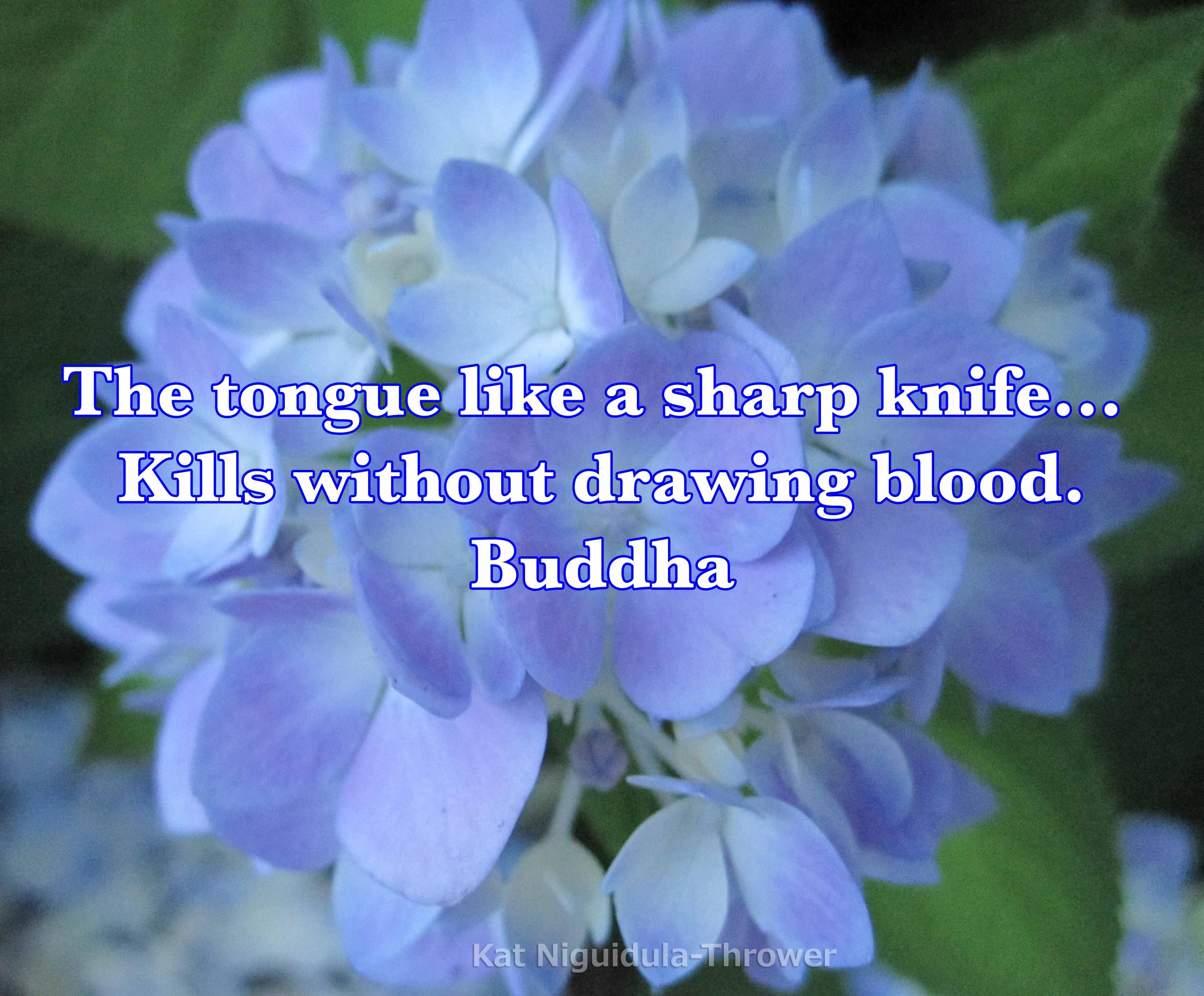 Like a Sharp Knife Kills without Drawing Blood Buddha the Tongue