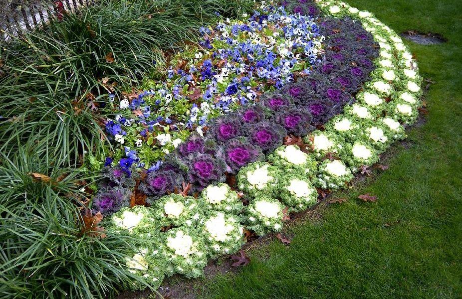 gardening offerings york