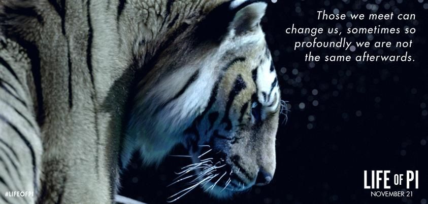 Life Of Pi Quotes I Love You Richard Parker : Richard Parker pictures and words Pinterest