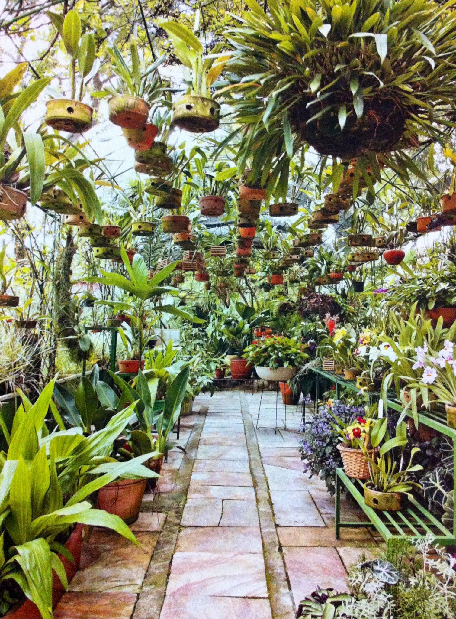 ideias originais jardim : ideias originais jardim:Estufa