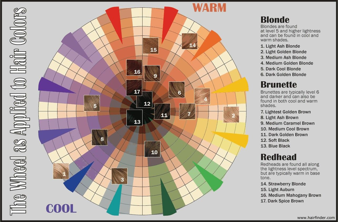 Hair Color Wheel  HairColor Symposium  Pinterest