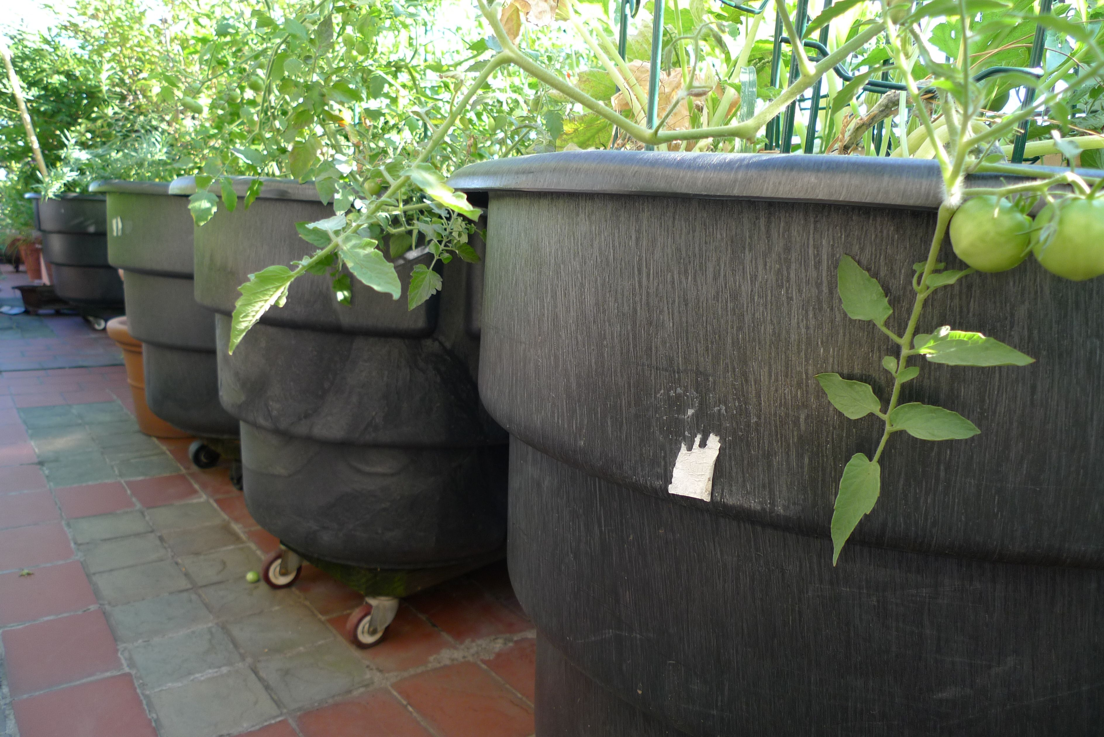 Inexpensive planters 28 images inexpensive concrete for Large garden planter ideas
