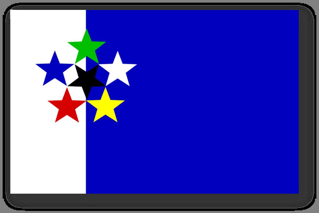 flag day co to znaczy