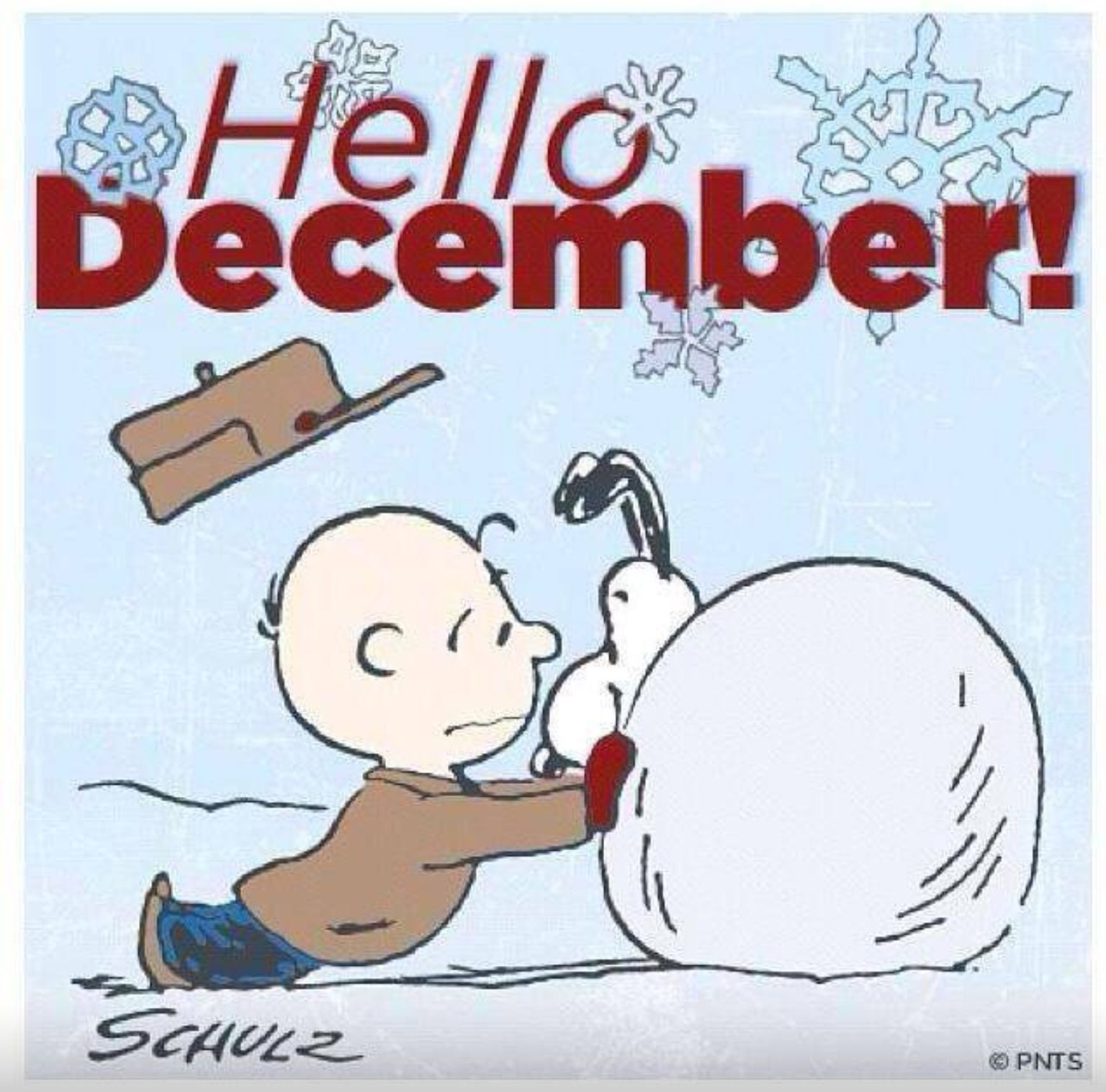 Snoopy & Charlie Brown December | Always About the Peanuts ...