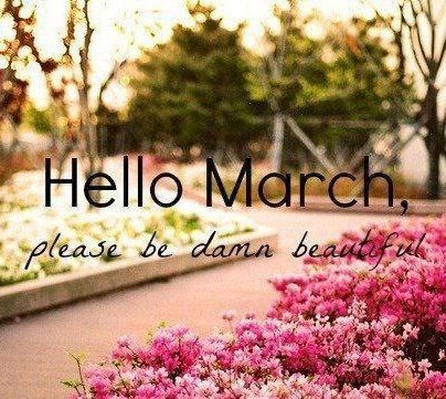 hallo maart ohlalau online communicatie
