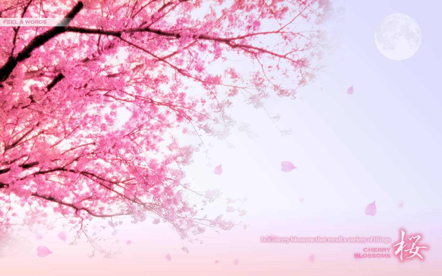 Pretty pink wallpapers