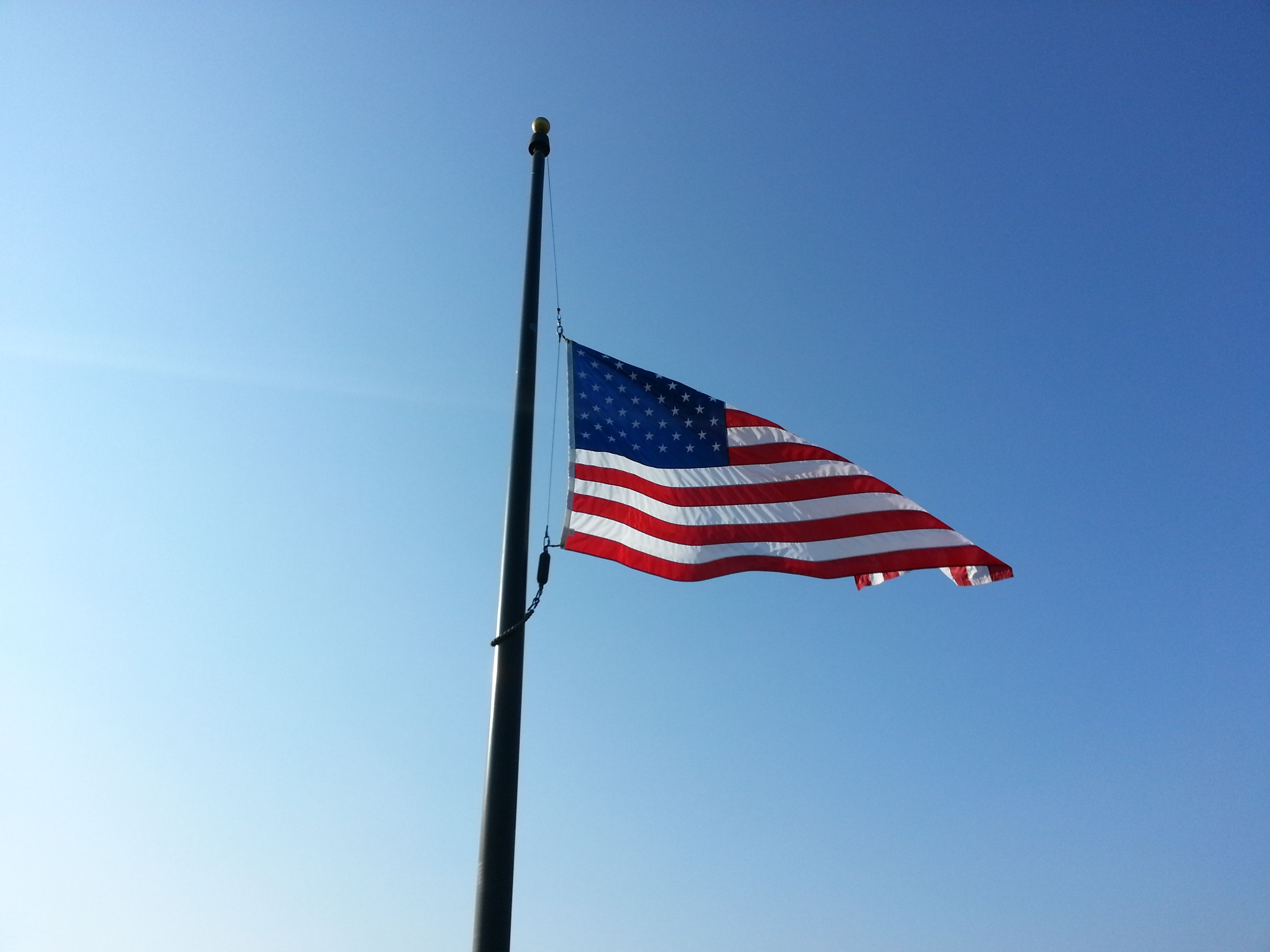 are flags at half staff on veterans day