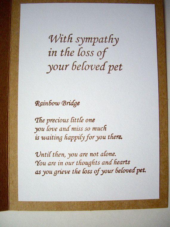 FREE Sample Sympathy Letters - WriteExpress