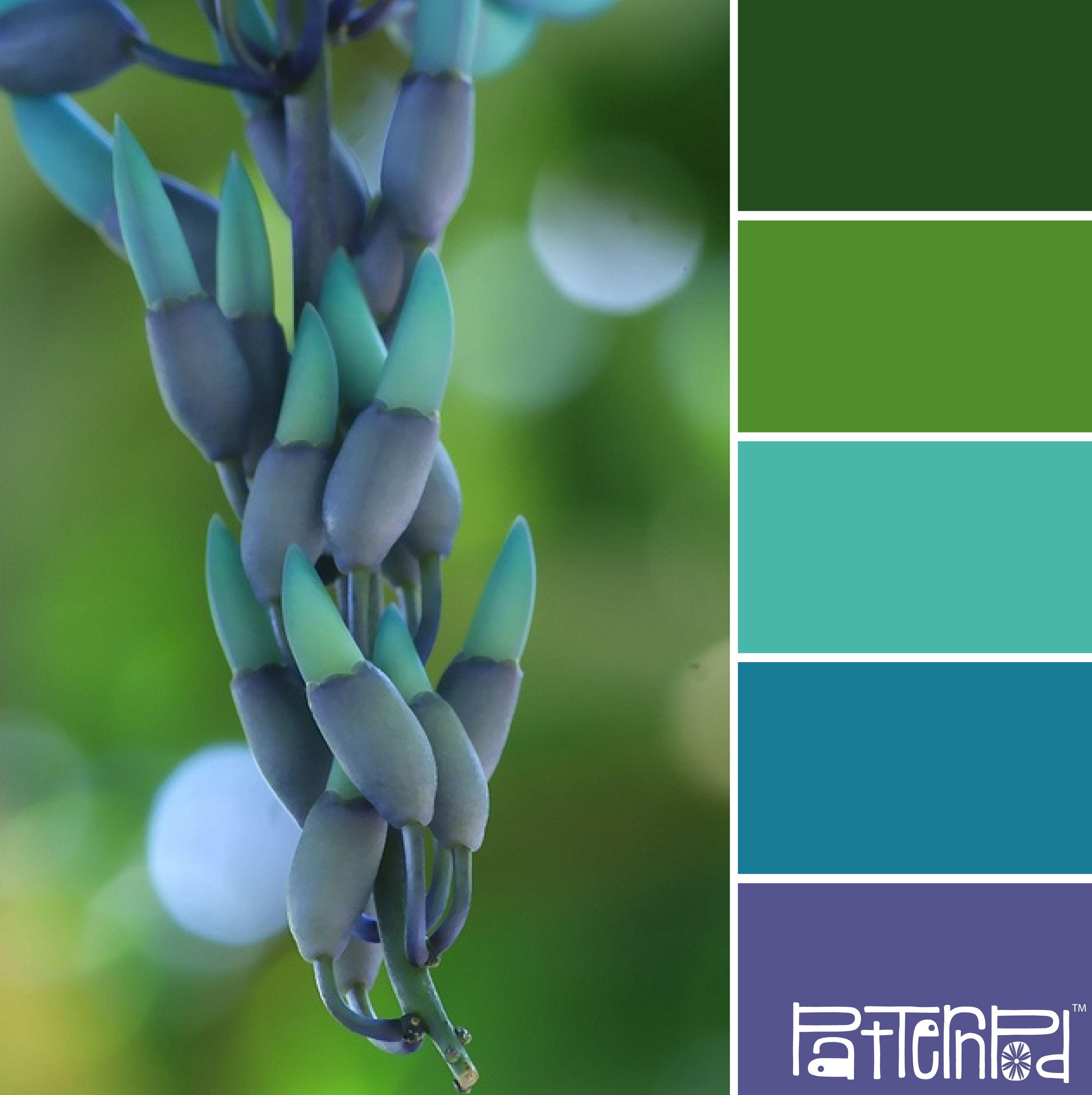 Pin by ella en marjan schippers on color scenes pinterest - Blue and green combination ...