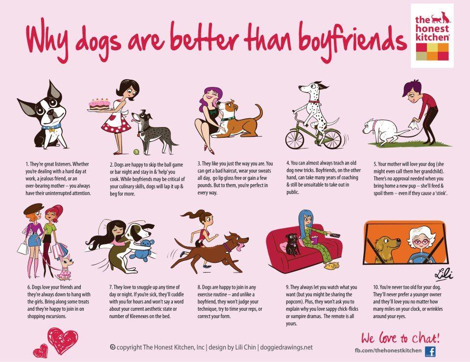Γιατί οι σκύλοι είναι καλύτεροι από τους φίλους σας;