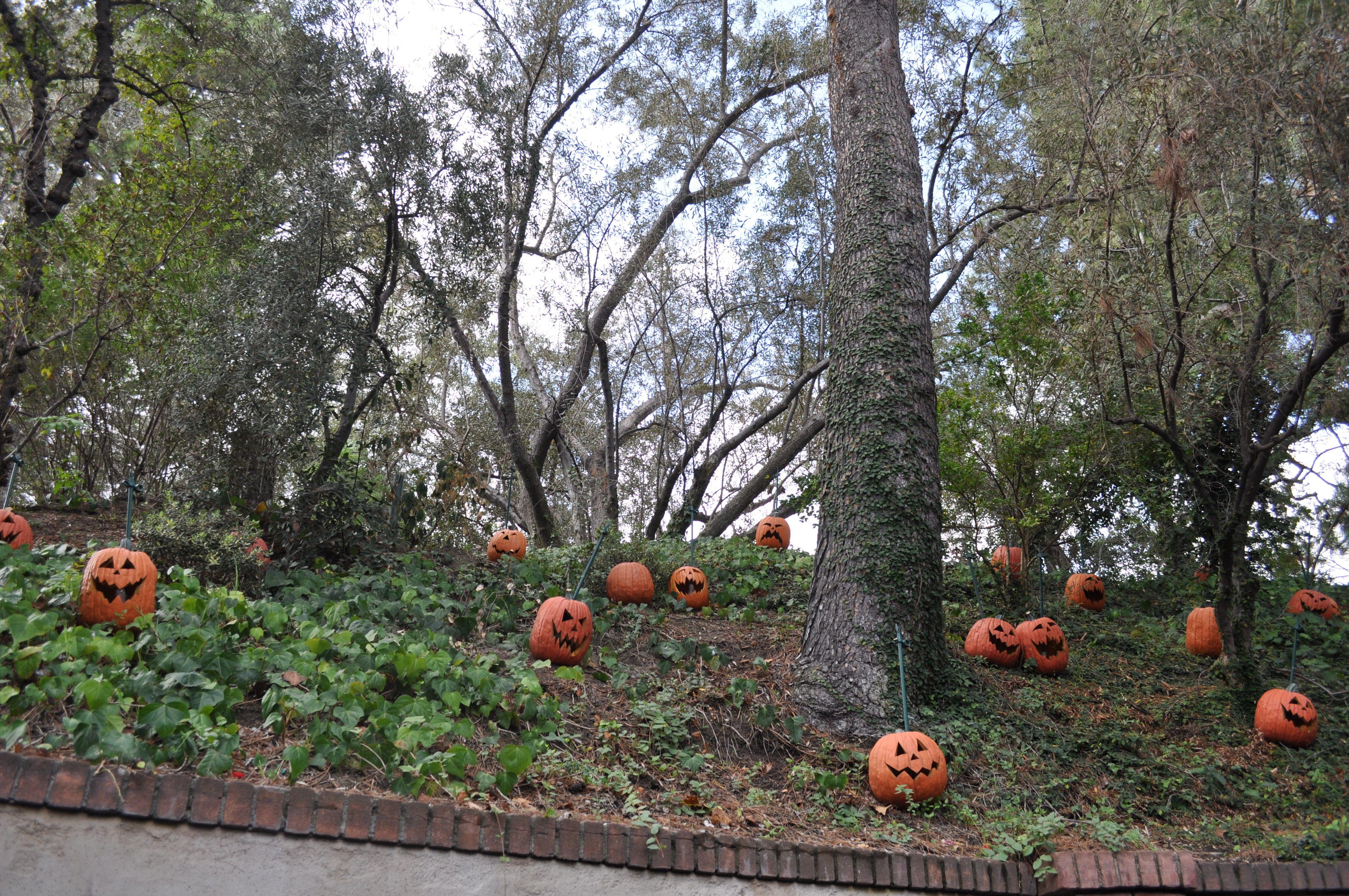 Disneys Haunted Mansion Yard  Halloween decorations  Pinterest