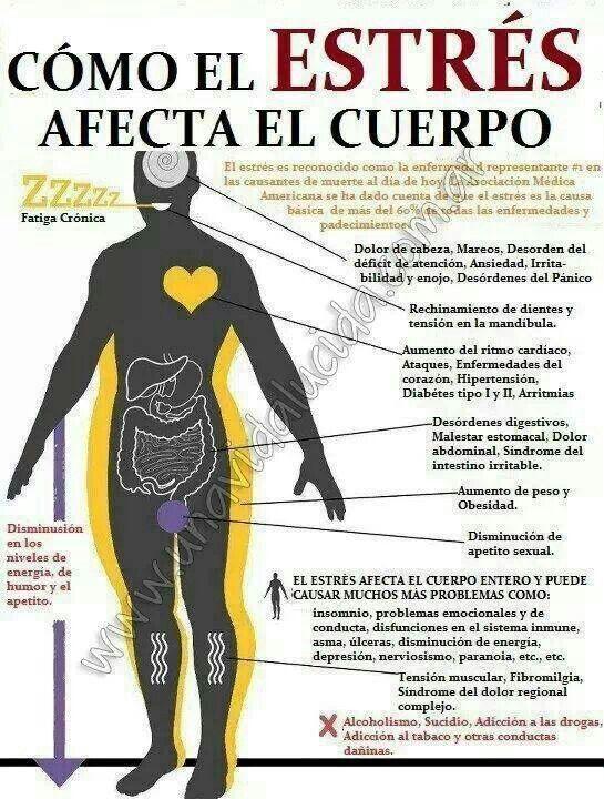 Cómo el Estrés afecta al cuerpo 647ce7f5110d157065317f0cf3a409c5