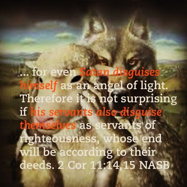 Wolf7 furthermore Wolves In Sheeps Clothing Quotes further Freelance4freedom wordpress in addition fanpop besides Native american banners. on wolf sheep quote sheepdog