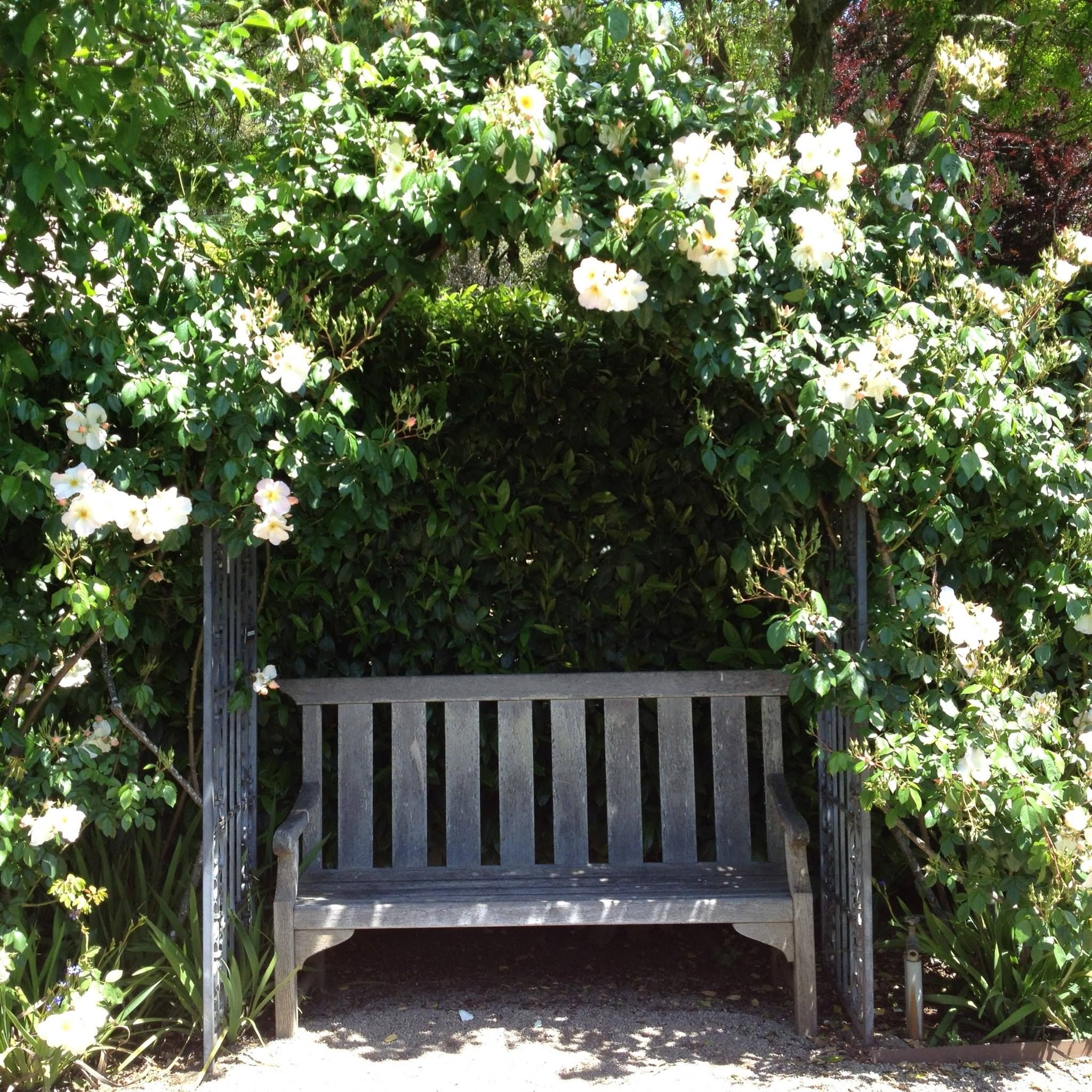 Garden bench with covered trellis landscape ideas for Landscape my garden