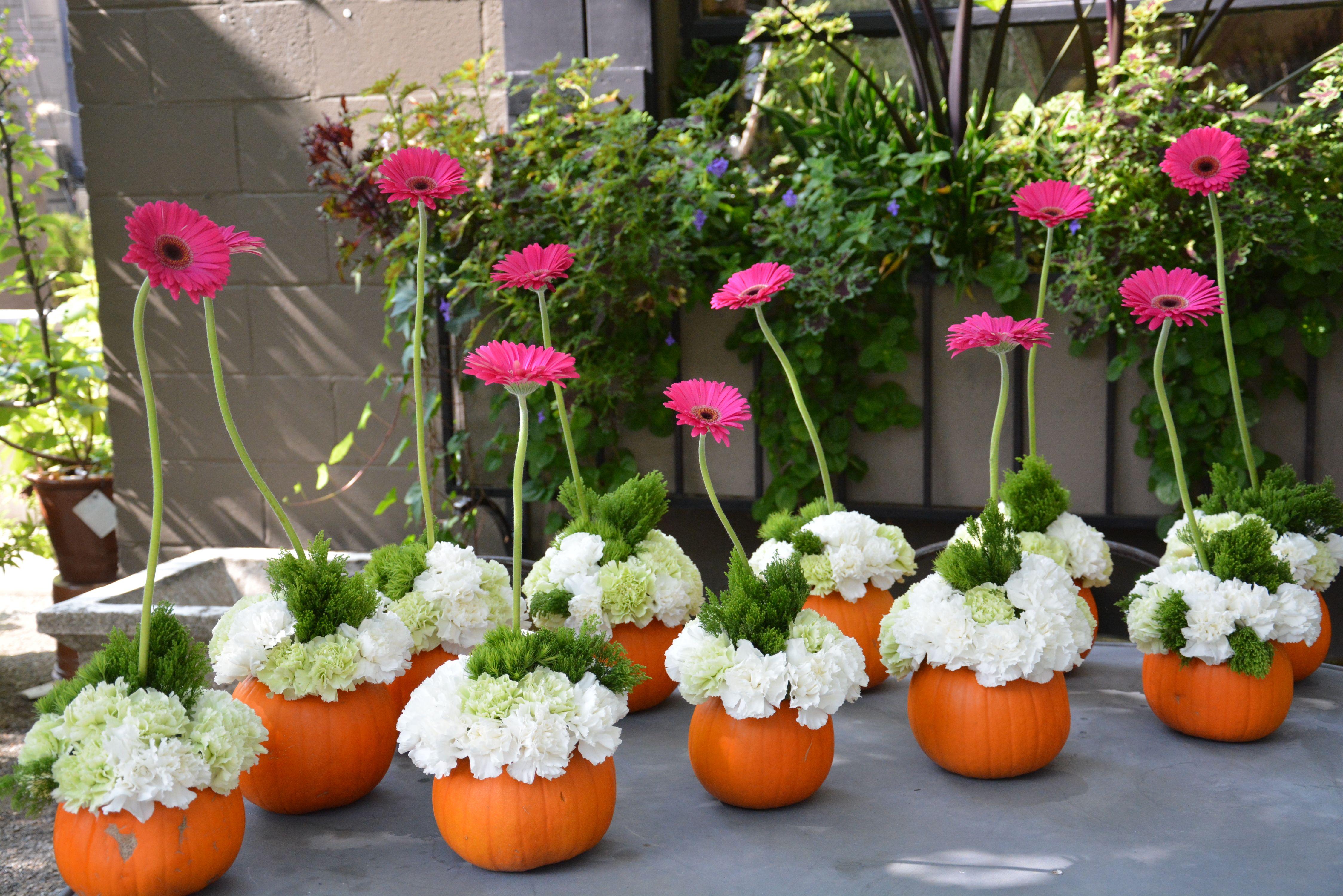 Pink Gerberas Flower Arrangements Pinterest