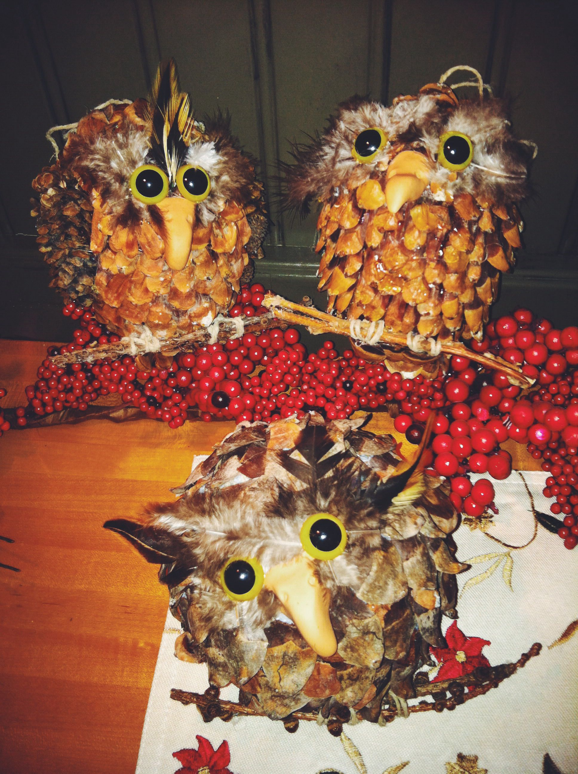 Pine Cone Owl Craft Project