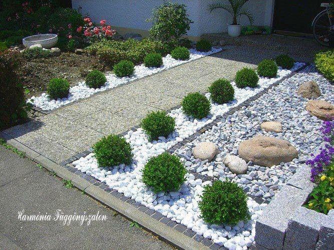 vegetable small garden