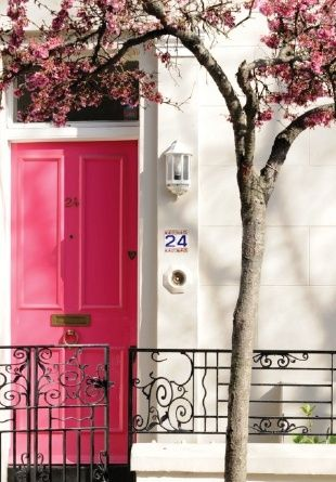 pink door and flowers