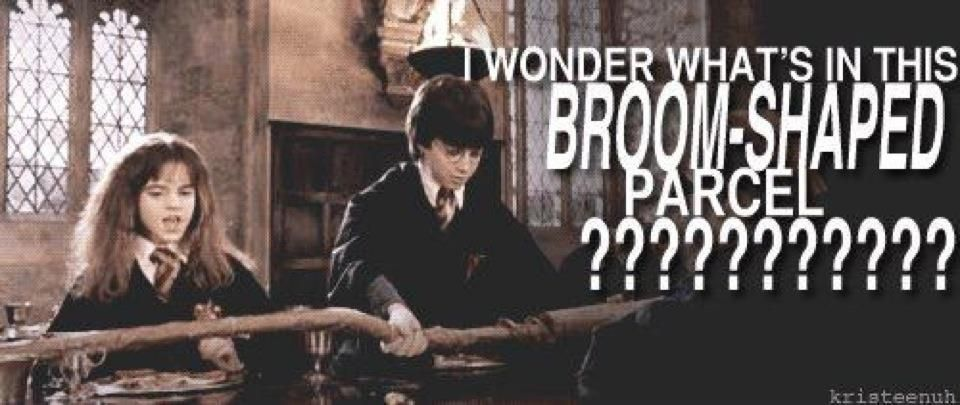 Harry potter ootp snape essay