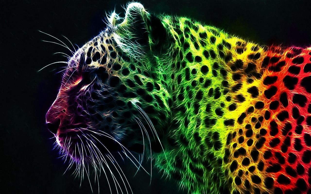 rainbow cat wallpapers - photo #1