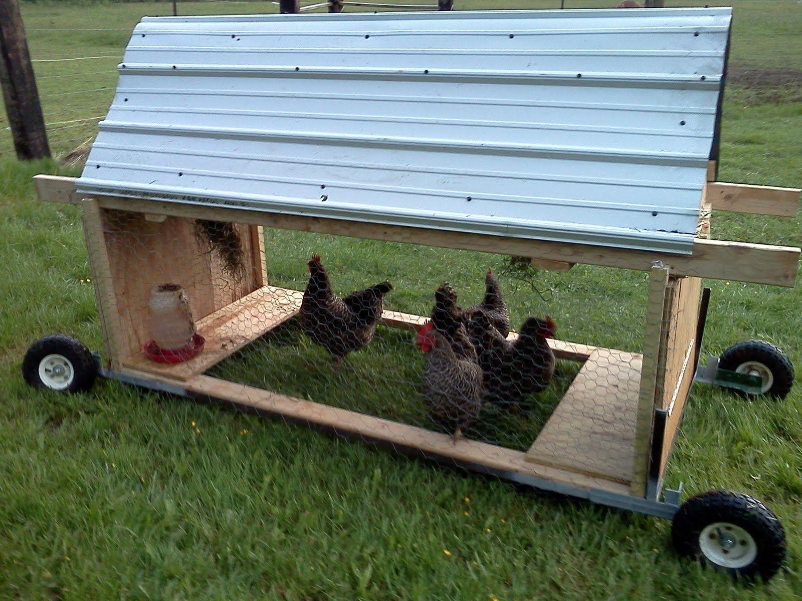 Chicken Tractors Hens Roosters Peeps Pinterest
