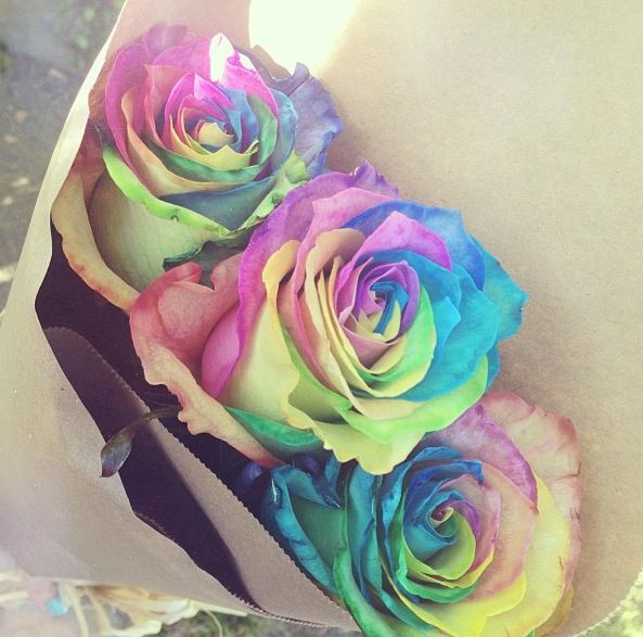 Rainbow roses order pictures to pin on pinterest tattooskid for Where to buy rainbow roses