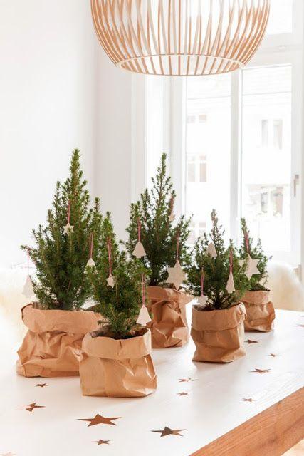 Những cây thông xanh nhỏ xinh được bọc trong những túi giấy, đính thêm các ngôi sao và quả chuông thật sinh động.