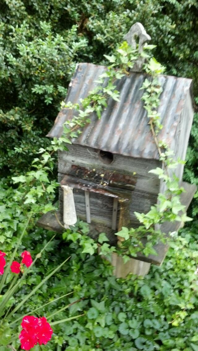 Pinterest outdoor crafts just b cause - Summer projects house garden ...