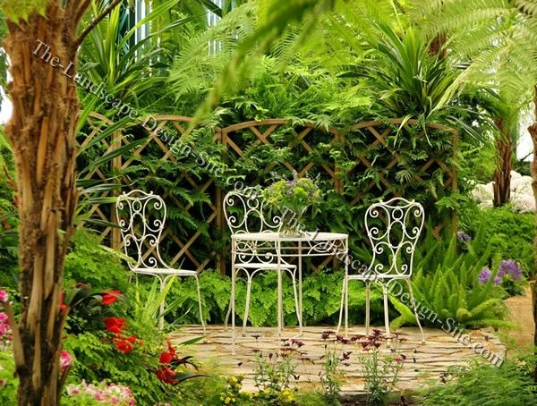 Small tropical patio landscaping ideas pinterest for Small tropical garden designs