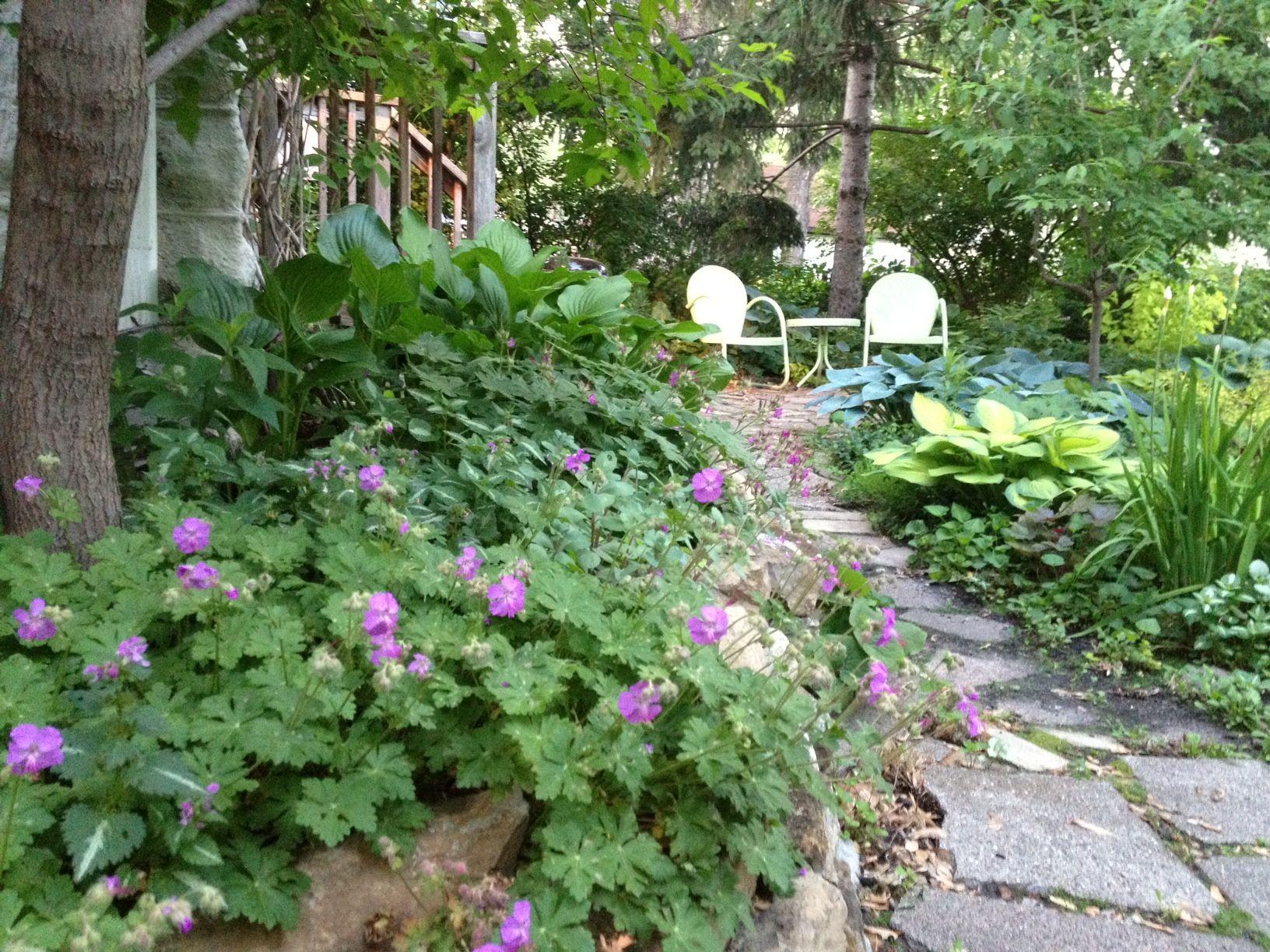 Back Garden Spring Outdoor Decor Pinterest