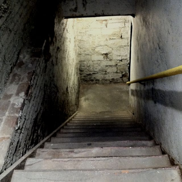 creepy basement beauties and oddities pinterest