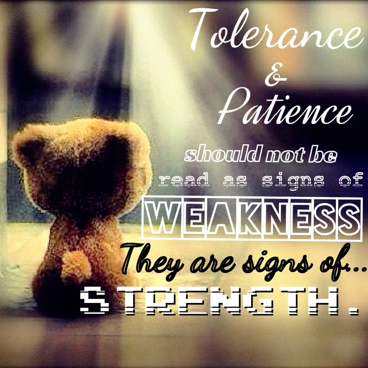 Tolerance And Patience Quotes Quotesgram