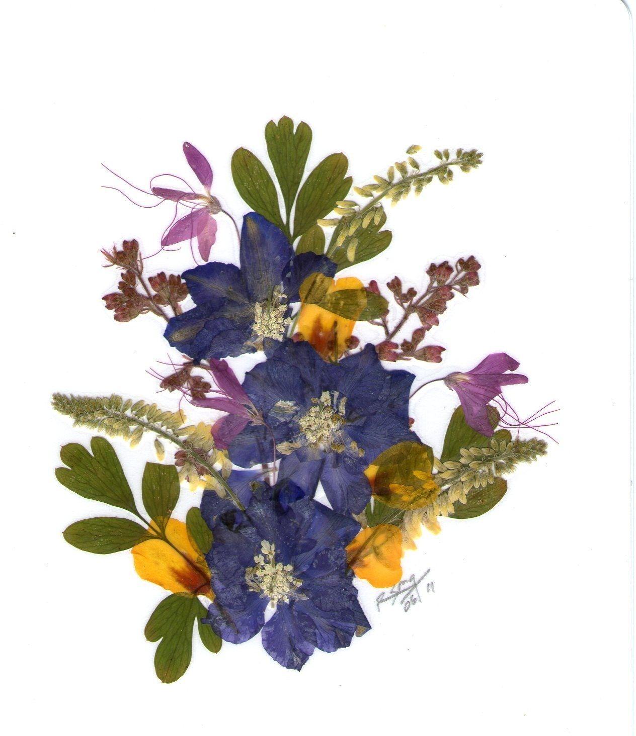 Pressed flowers crafts pinterest