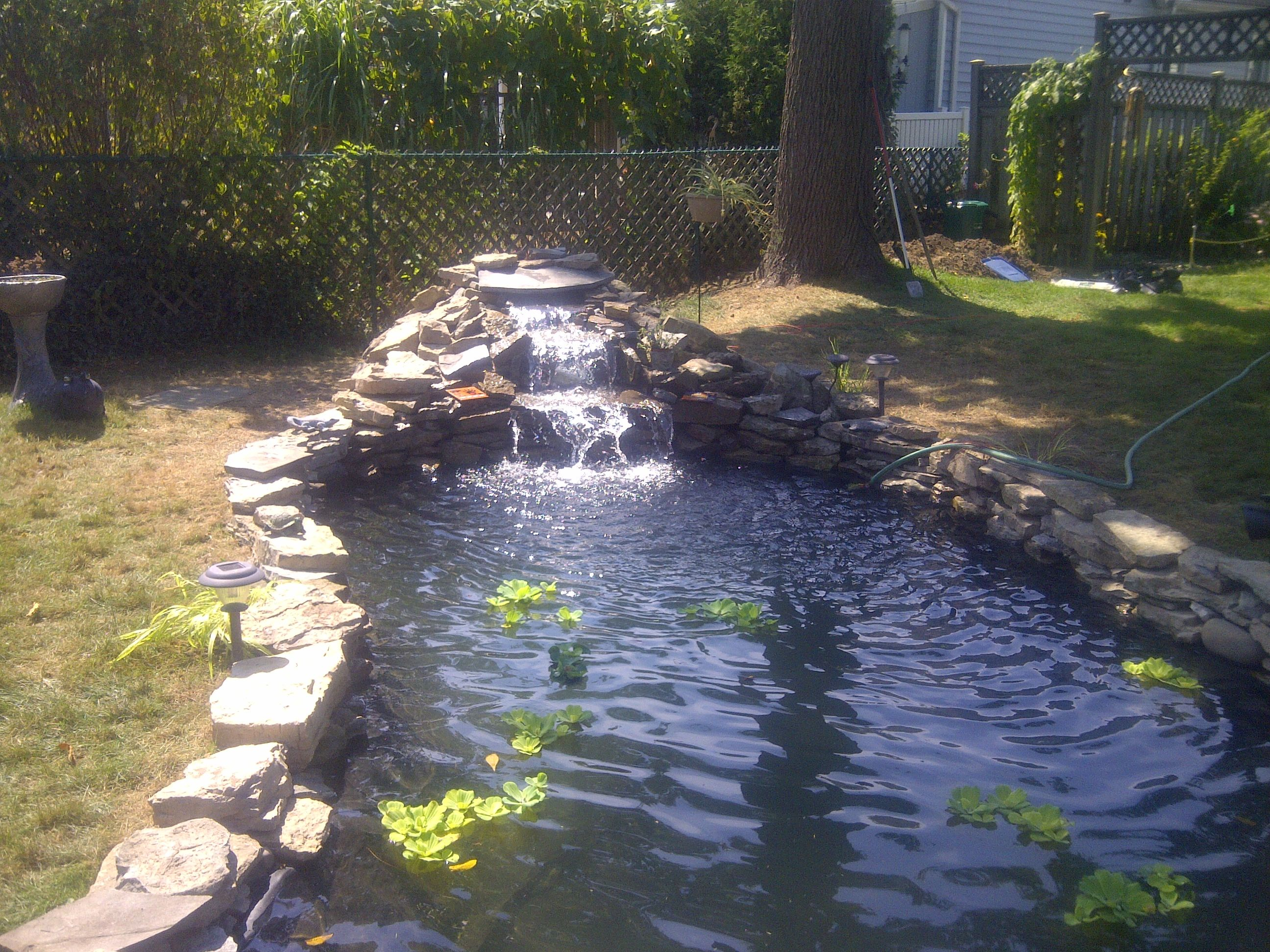 Waterfall running large pond my pool pond ideas dream for Large pond waterfall