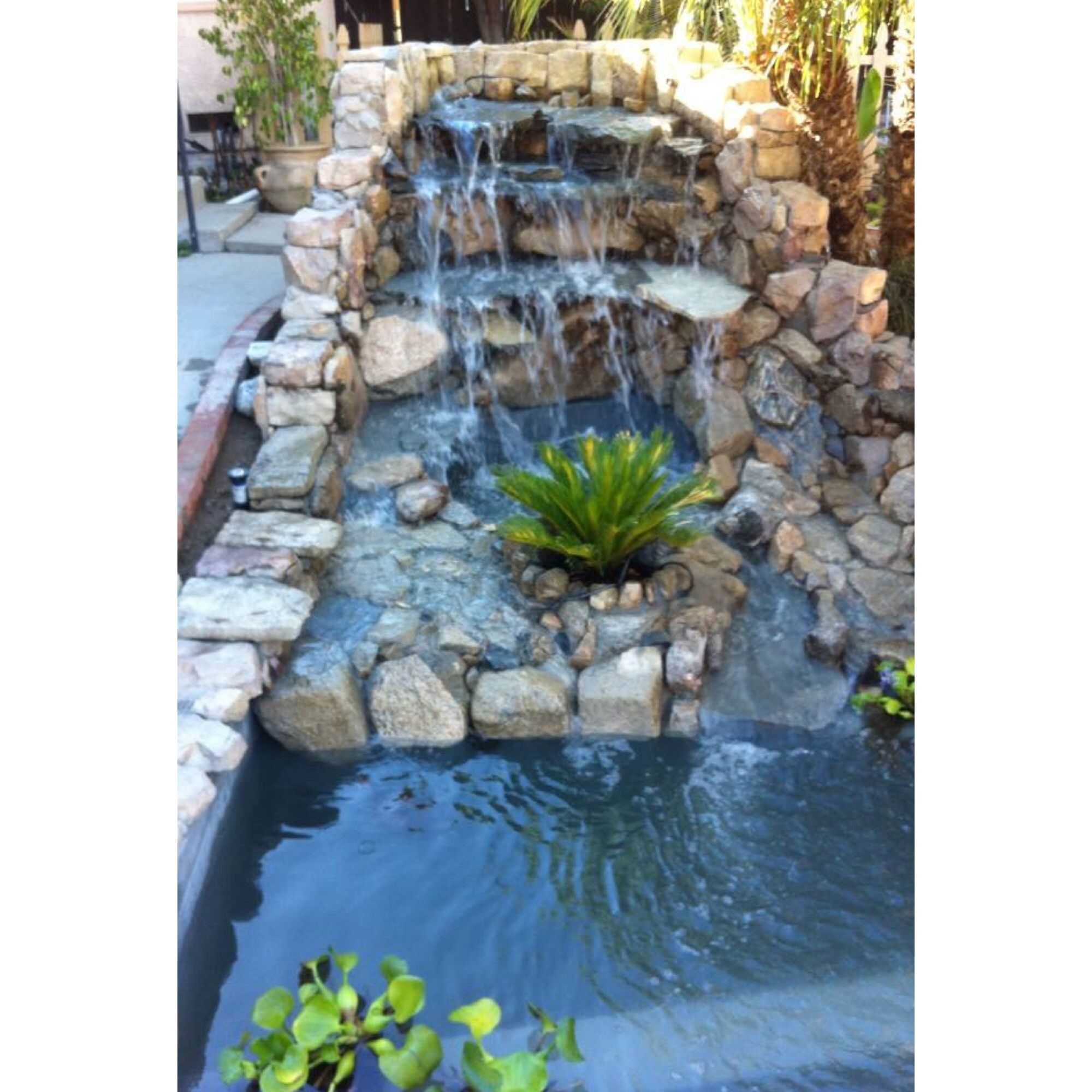 Backyard diy pond ponds pinterest for Diy outdoor pond