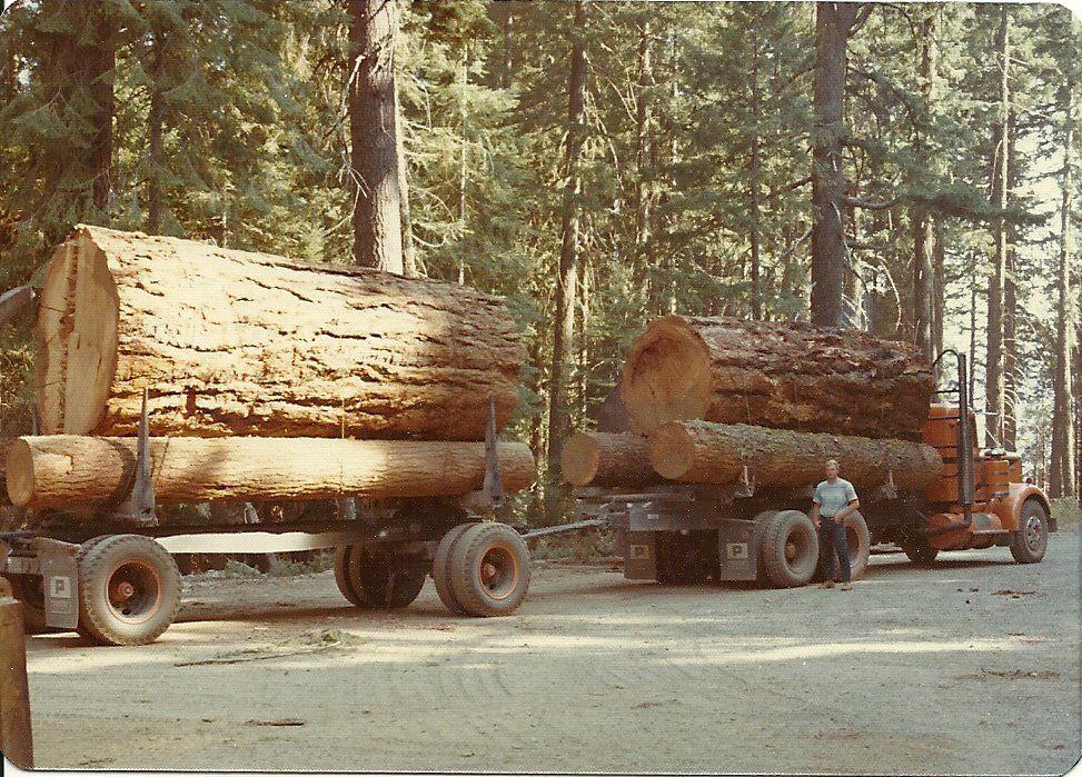 Big log load short logger good o l days of trucking