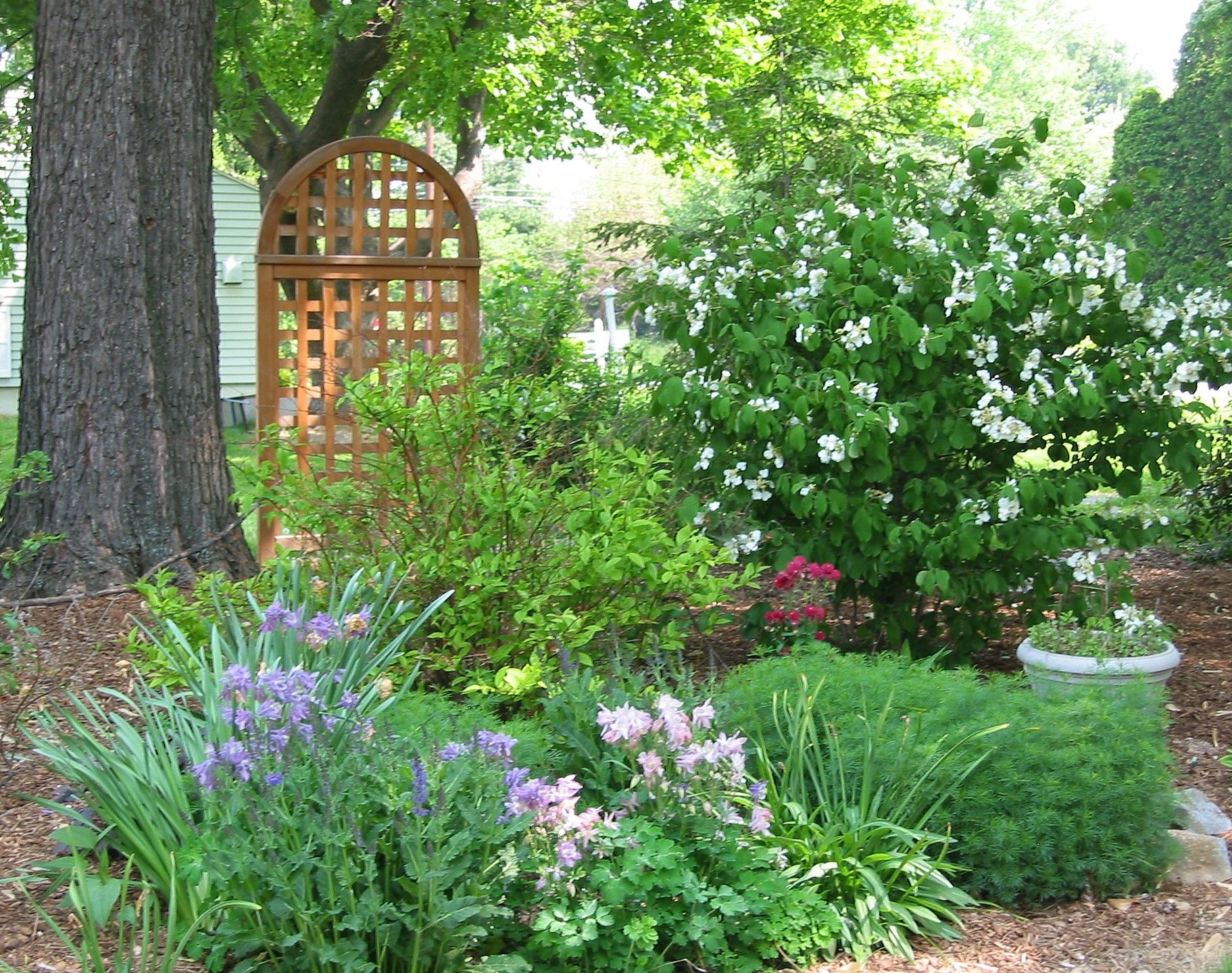 Shade garden in spring garden ideas pinterest for Spring garden designs