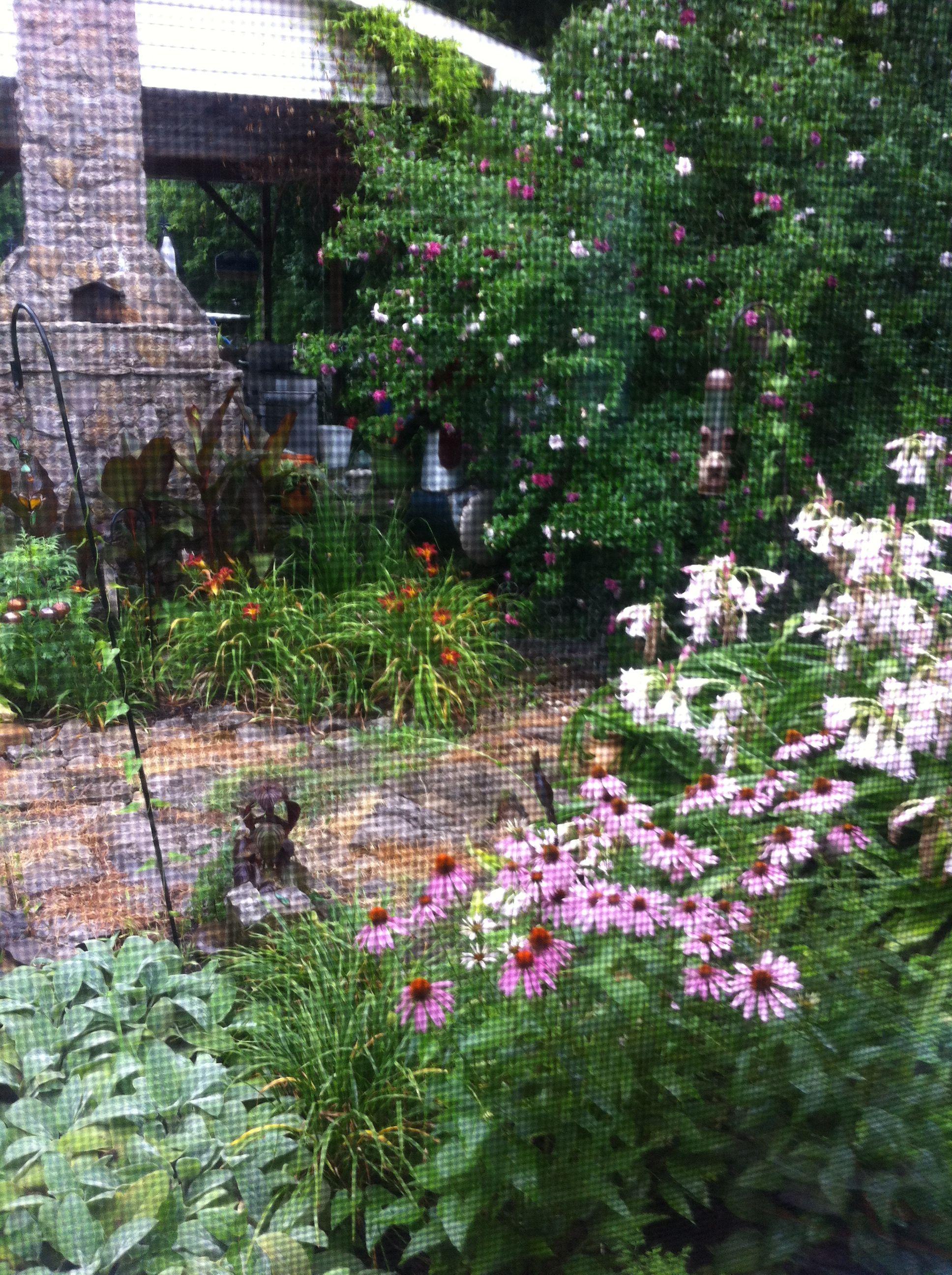 Outdoor secret garden ideas photograph secret gardens for Secret garden designs