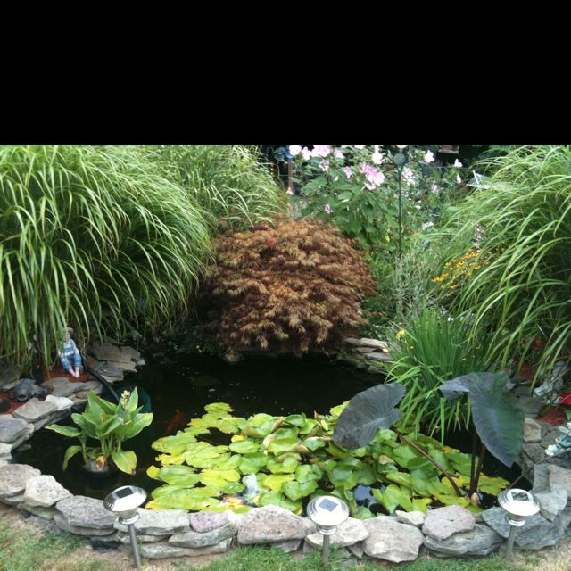 Building ideas landscaping ideas backyard nikon d3200 for Garden pond unlimited