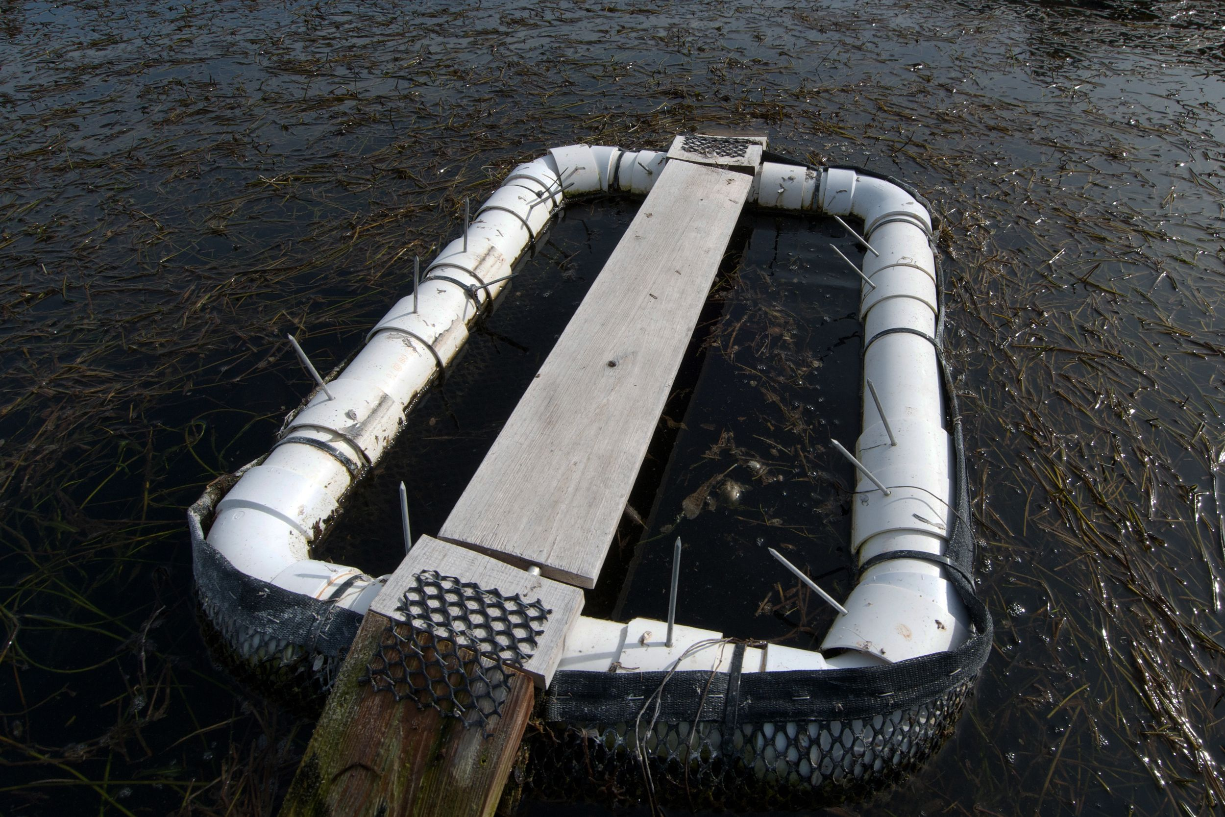 Turtle story basking trap diy projects pinterest for Pond stuff for sale