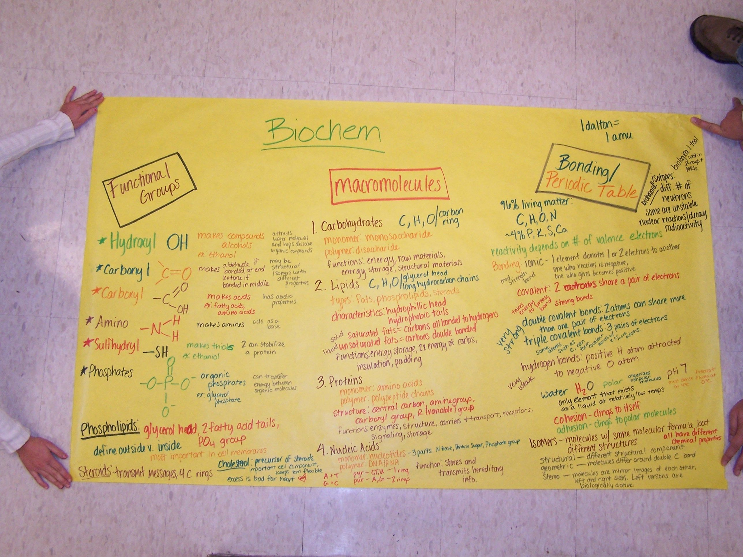 ap college board essays