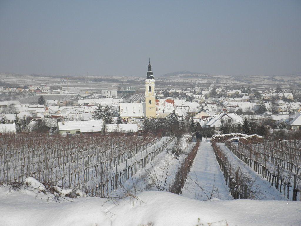 Langenlois Austria  City pictures : Langenlois | Austria II | Pinterest