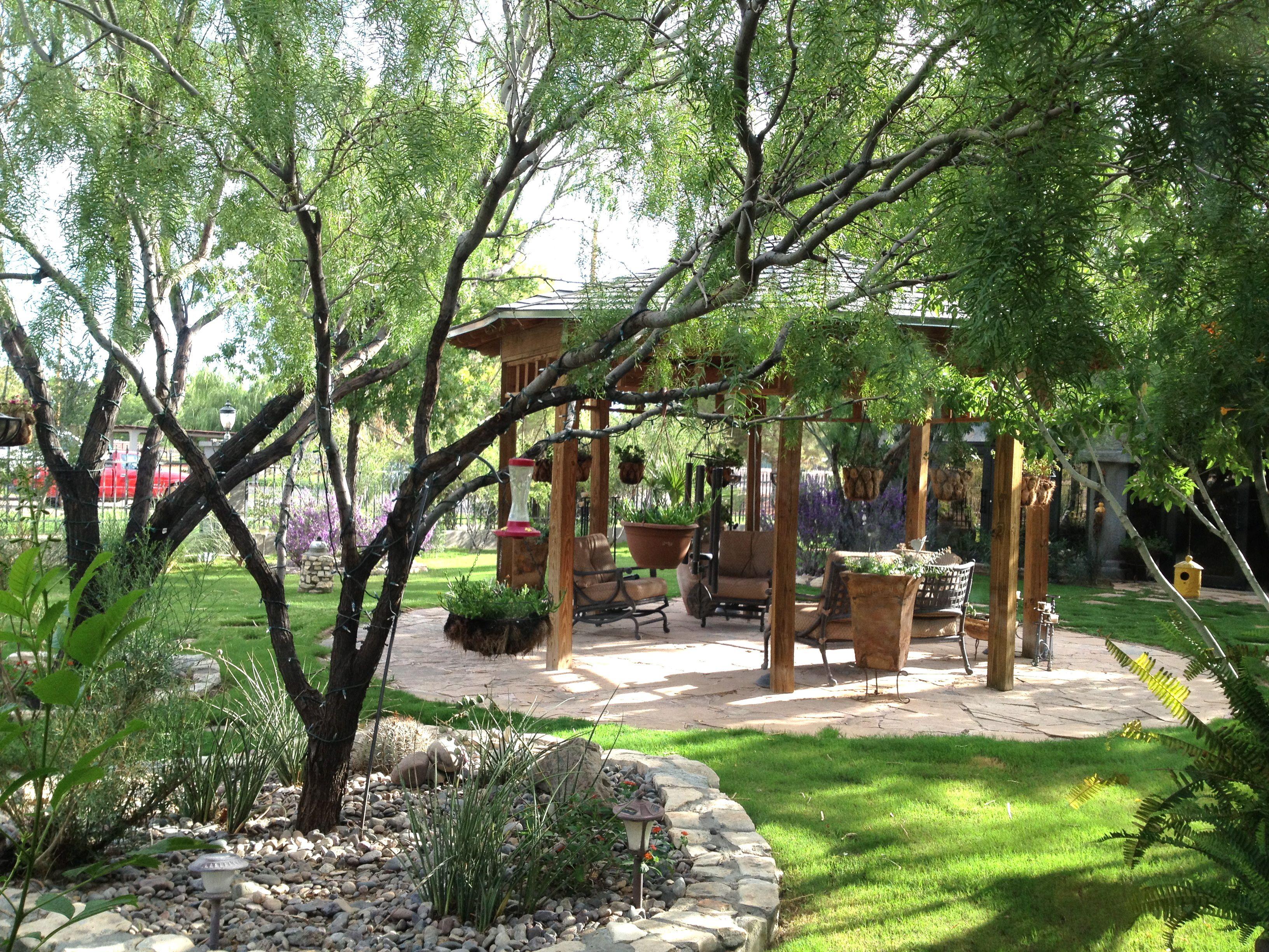 my backyard wedding wedding ideas pinterest