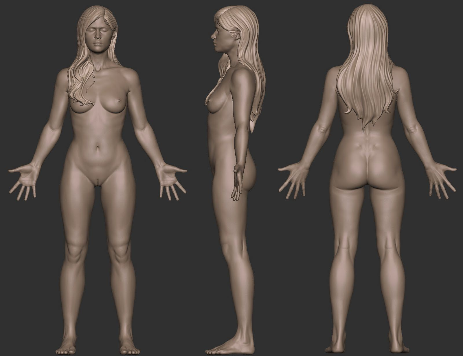 3d anatomy sex erotic photo