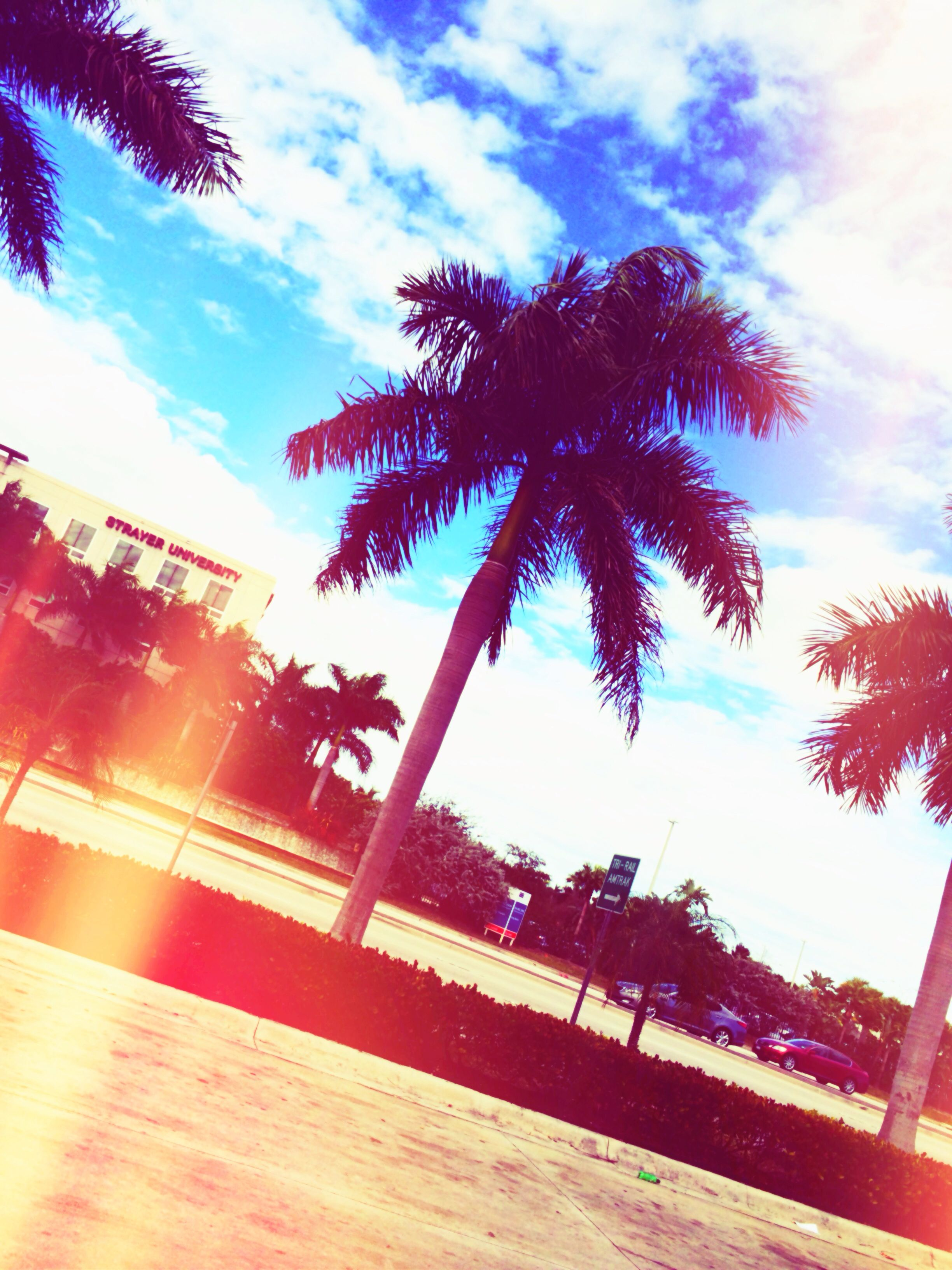 florida betches | pretty pictures. | Pinterest