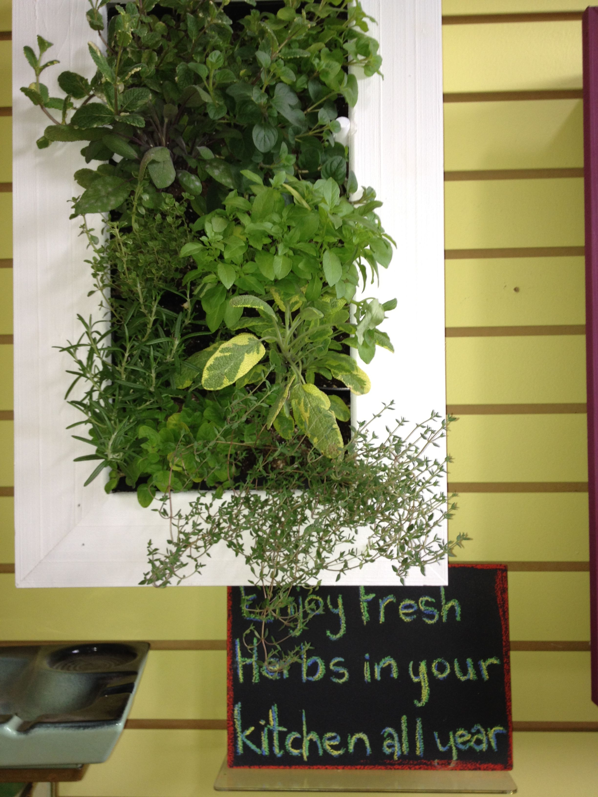 Vertical Herb Garden Interior Ideas Pinterest